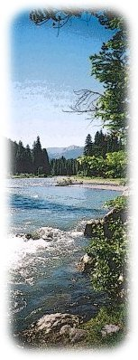 North Fork of the Shoshone River summer of 2002